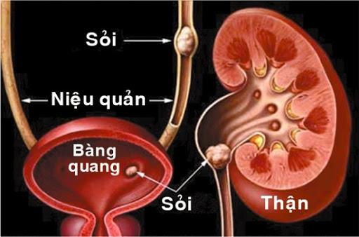 bai-giang-benh-soi-tiet-lieu-dr-tien